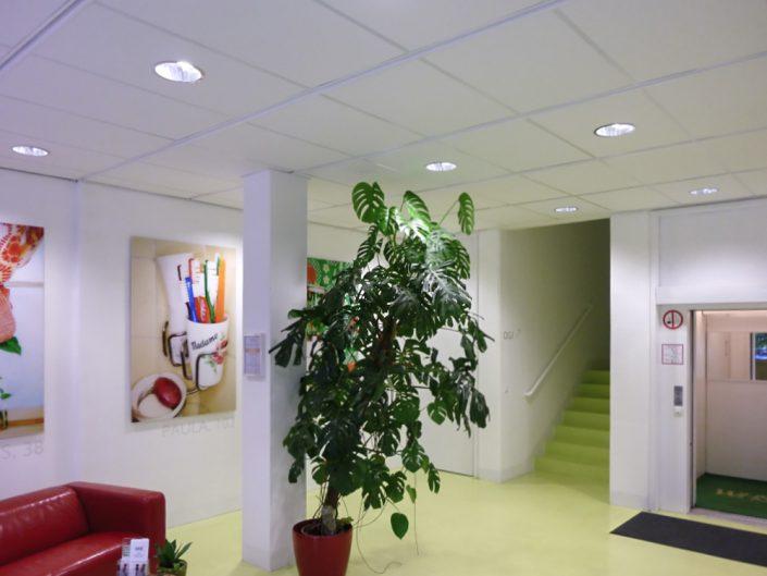 Bürogebäude in Meidling – Der Eingangsbereich mit Aufzug und Pflanze